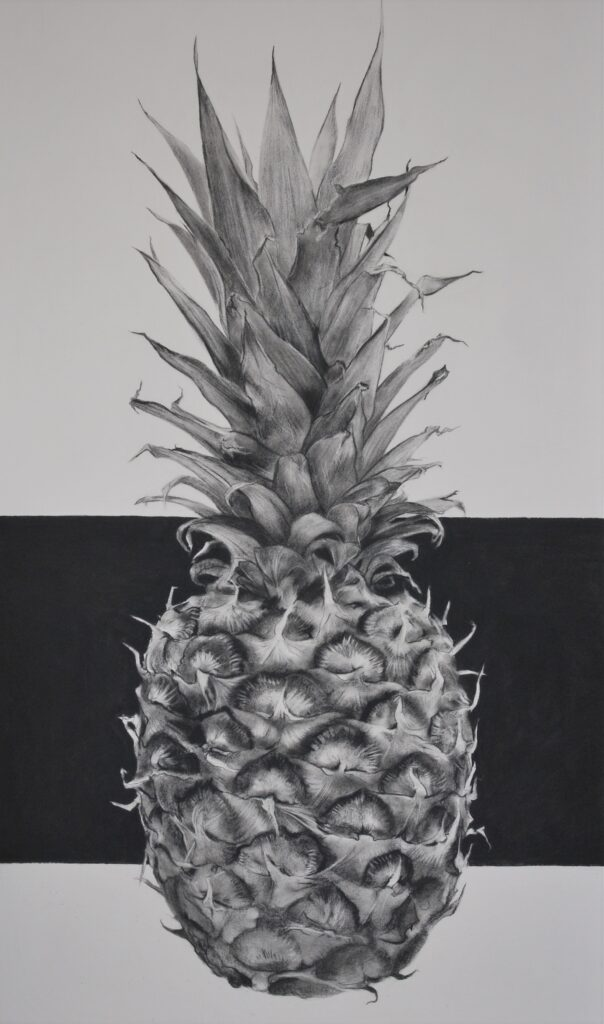 """Pineapple"" Charcoal on paper 