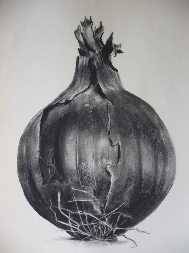 """Red Onion"" Charcoal on paper 