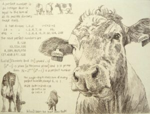 Etching of a cow with notes on number theory
