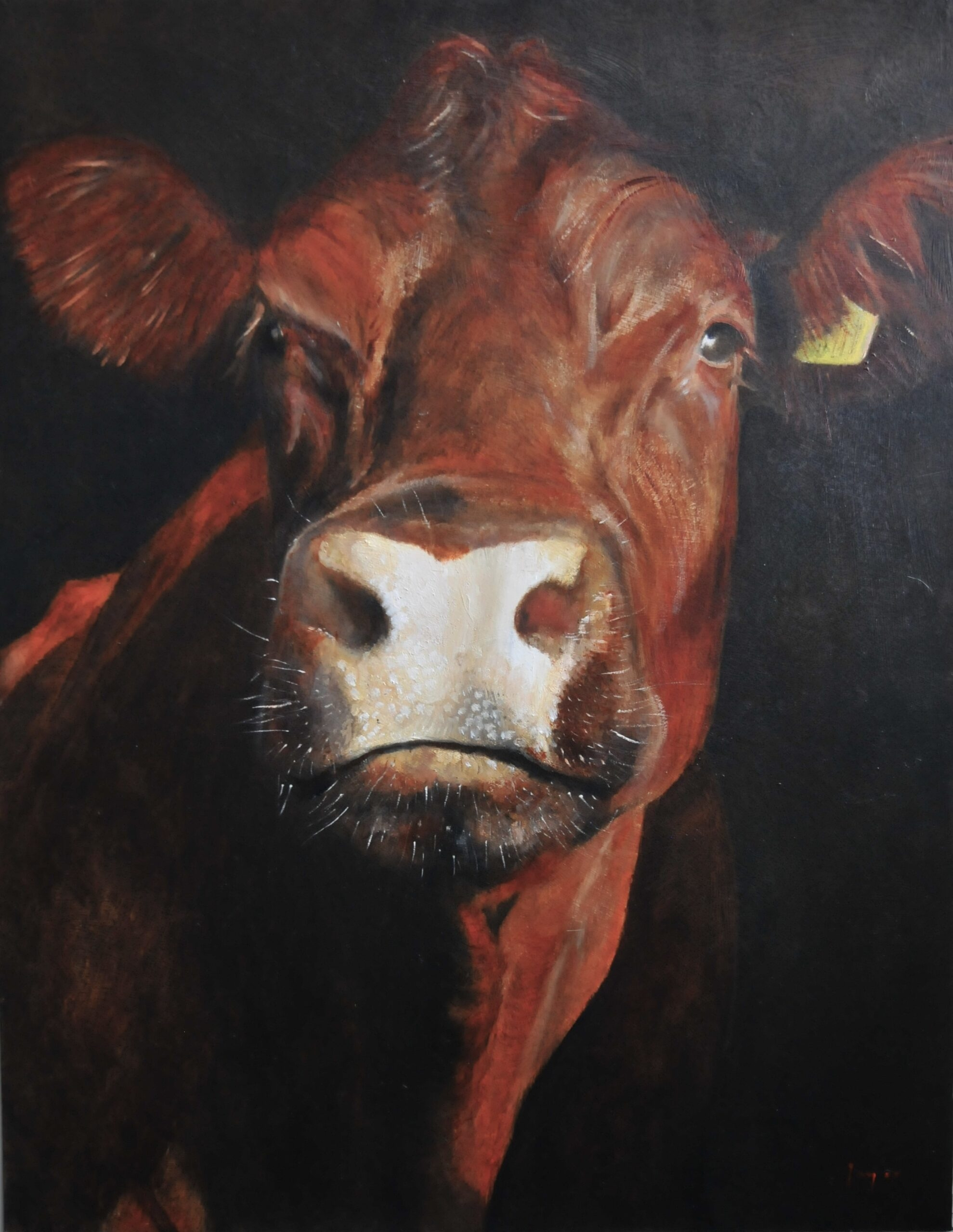 Oil painting of a Sussex cow in portrait format